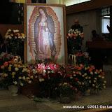La Virgen de Guadalupe 2011 - IMG_7392.JPG