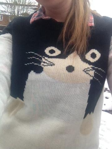 Cat Shirt Amazon Review