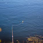20140905_Fishing_Lysyn_004.jpg