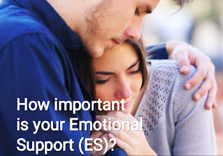 How important is your Emotional Support (ES)?
