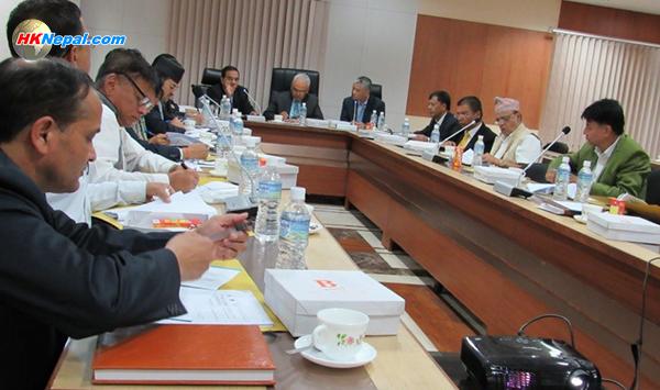 एनआरएन विश्व सम्मेलनको लागि १९ सदस्यीय उच्चस्तरीय समिति गठन