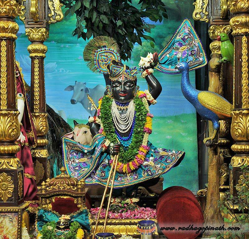 ISKCON Chowpatty Deity Darshan 03 Mar 2016  (13)