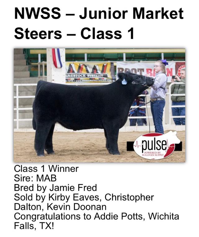Rcc blog nwss junior market steer show results for Rcc home show