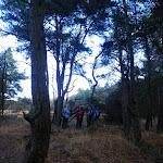 022-Nieuwjaarswandeling met de Bevers.Menno gidst ons door het mooie natuurgebied De Regte Heide te Go+»rle
