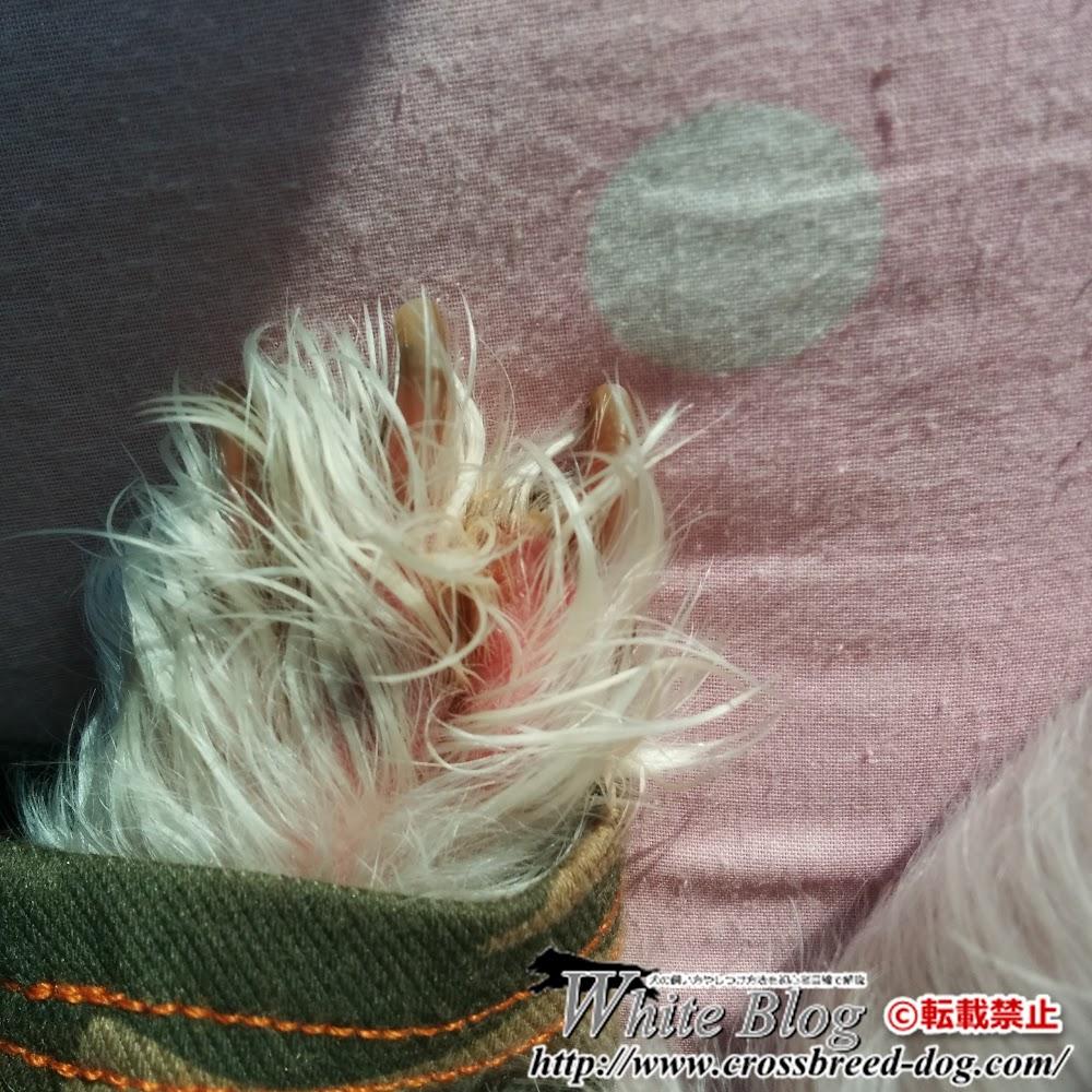 15-10-28-14-14-30-043_photo.jpg