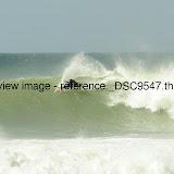 _DSC9547.thumb.jpg