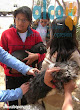 2da asistencia a Pisco por terremoto 2007 (16)