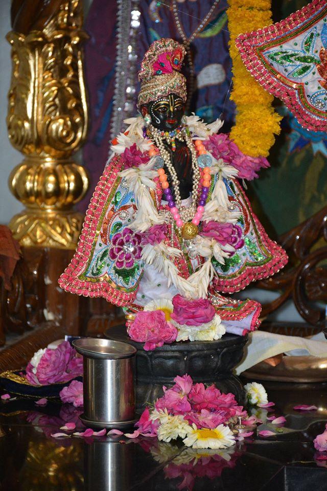 ISKCON Ujjain Deity Darshan 05 April 2016  (8)