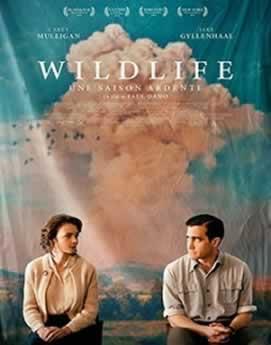 Baixar Filme Vida Selvagem