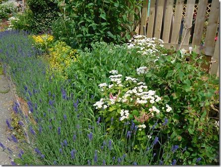 10 pretty garden below top lock
