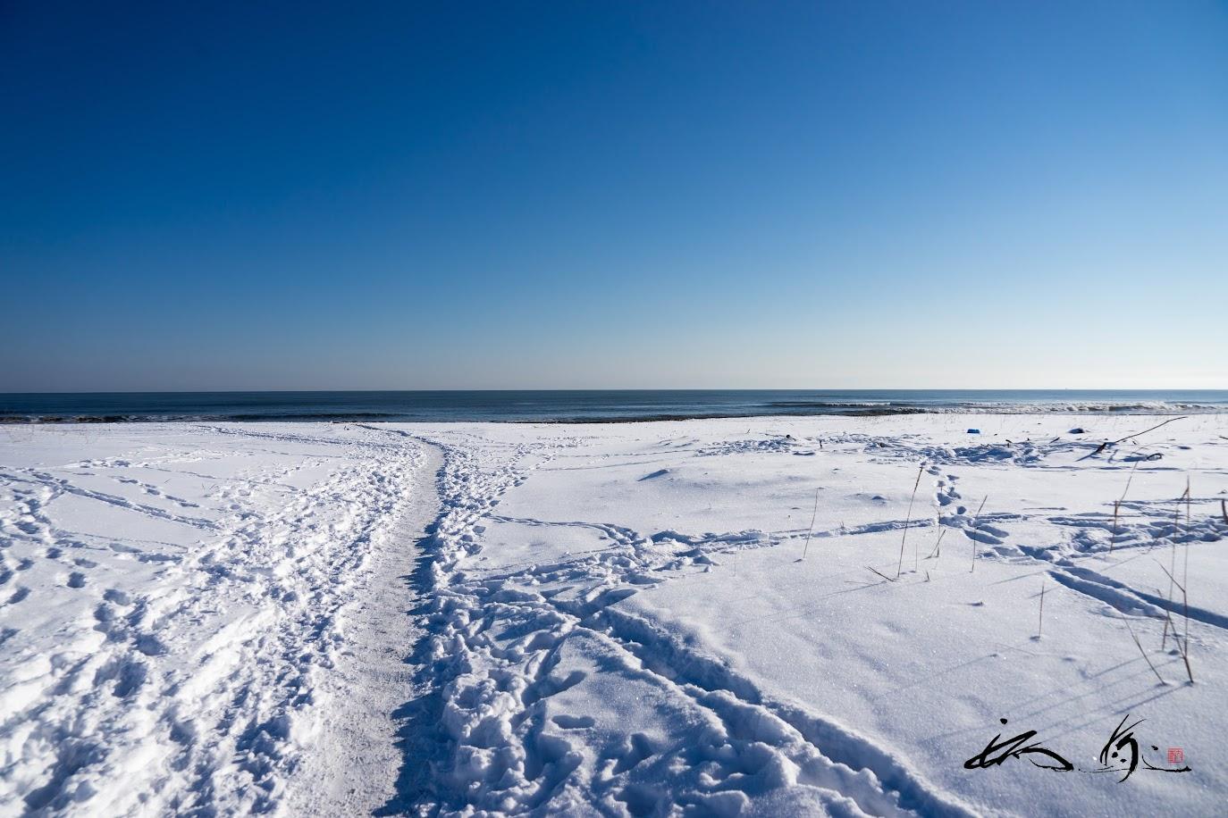 雪に覆われた海岸線