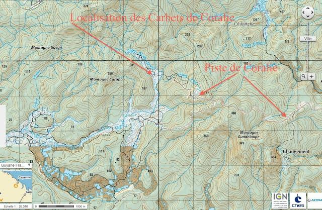 Les Carbets de Coralie : carte topographique IGN