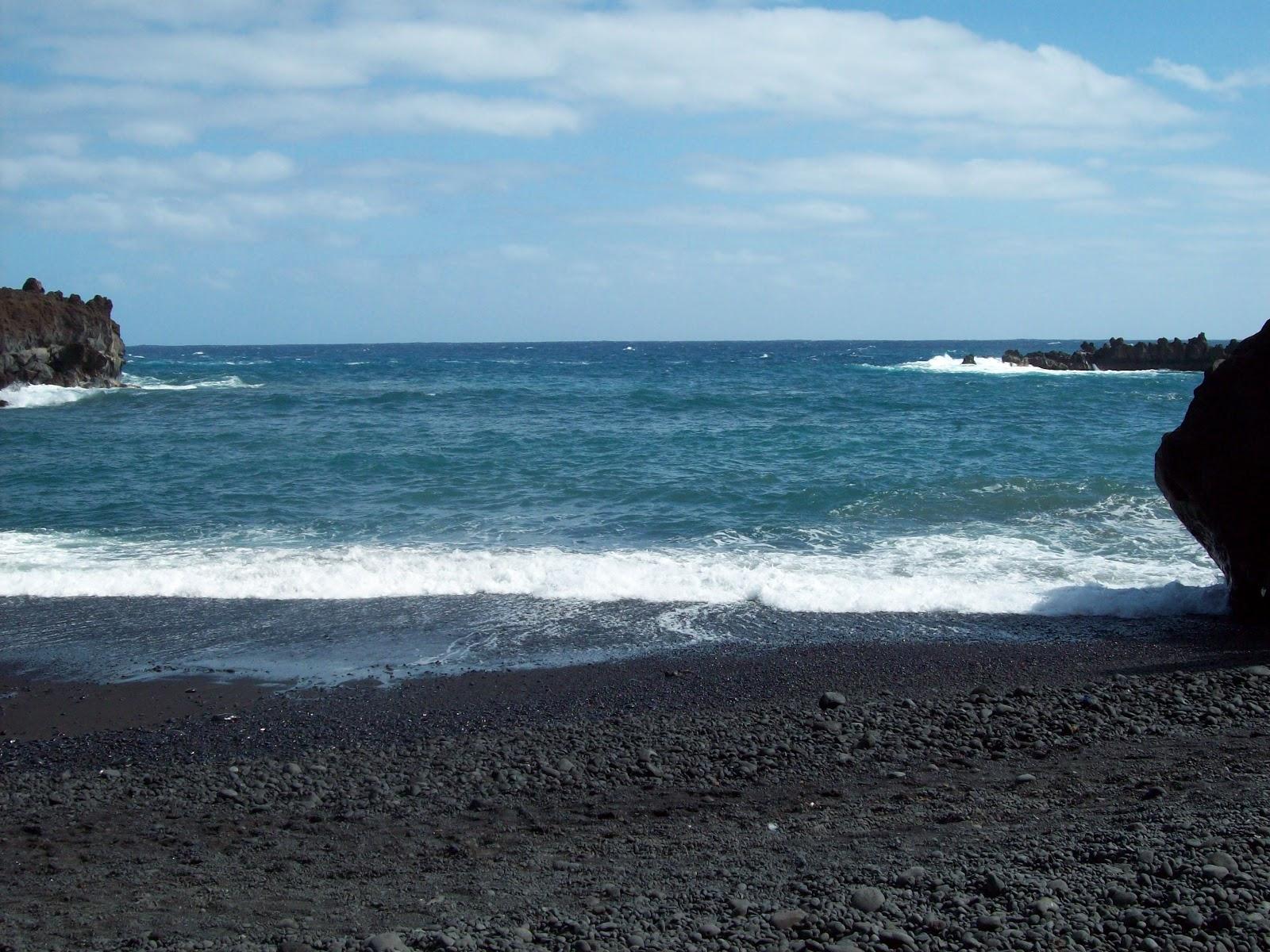 Hawaii Day 5 - 114_1563.JPG