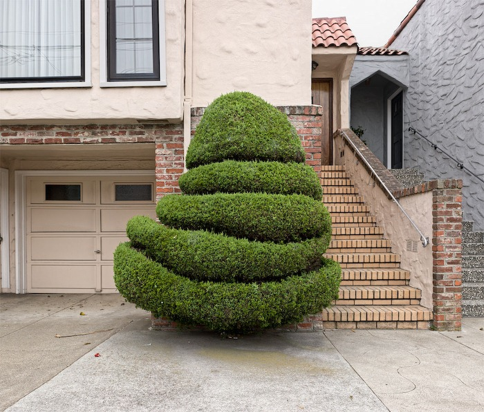 alan-george-topiary-1