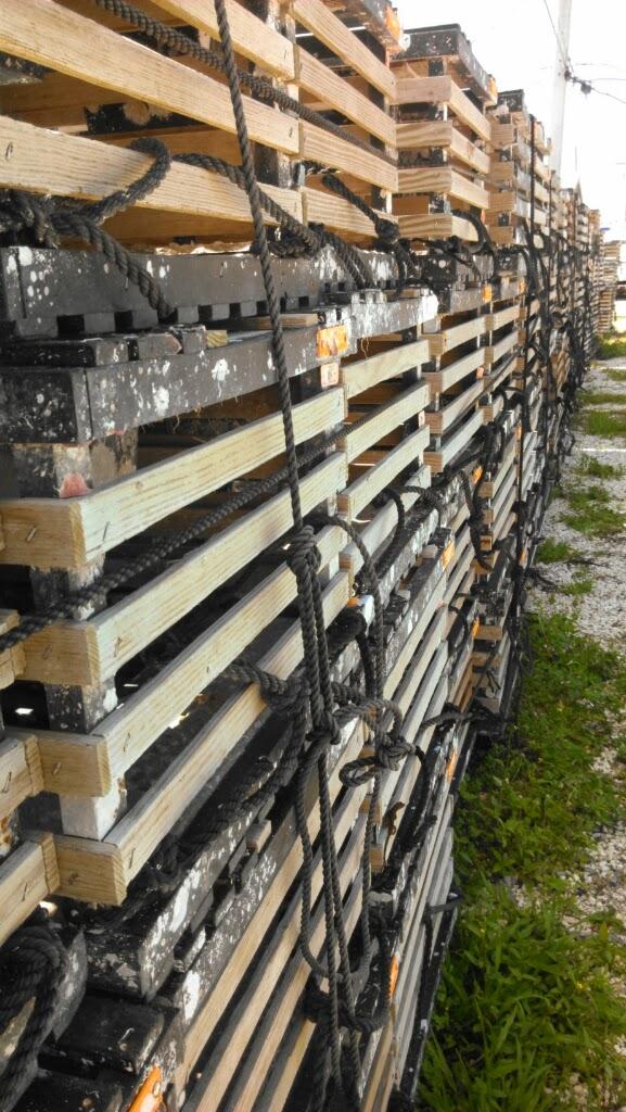 Key West Diary: Lobster Pots