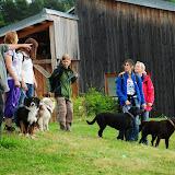 20130623 Erlebnisgruppe in Steinberger See (von Uwe Look) - DSC_3727.JPG