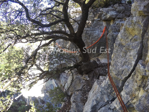 Départ de la via corda - arbre ombragé