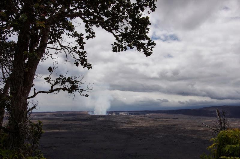 06-20-13 Hawaii Volcanoes National Park - IMGP7832.JPG