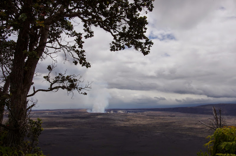 06-20-13 Hawaii Volcanoes National Park - IMGP7832.JPG