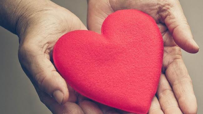 Phúc cho những ai có lòng ao ước sống trong lề luật Chúa (Tv 1, 1-2)