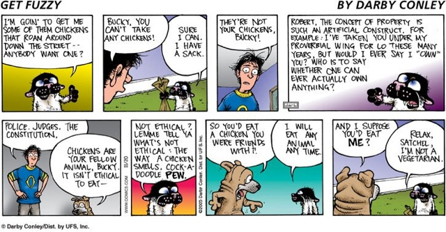 Amendment comic strip