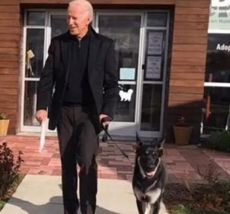 Joe Biden: जो बाइडेन की हड्डी टूटी, कुत्ते के साथ खेल रहे थे US के नवनिर्वाचित राष्ट्रपति