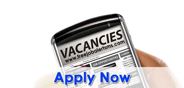 amc recruitment 2019 apply online, AMC, AMC Recruitment, AMC vacancy 2019