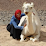 samira ouda's profile photo
