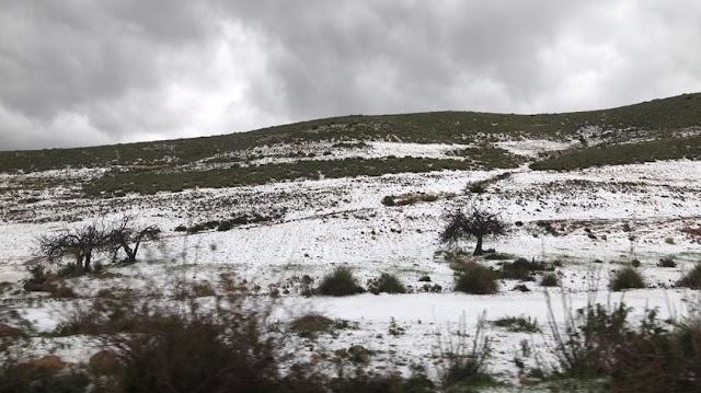 Carretera de Campohermoso dirección a Las Negras.