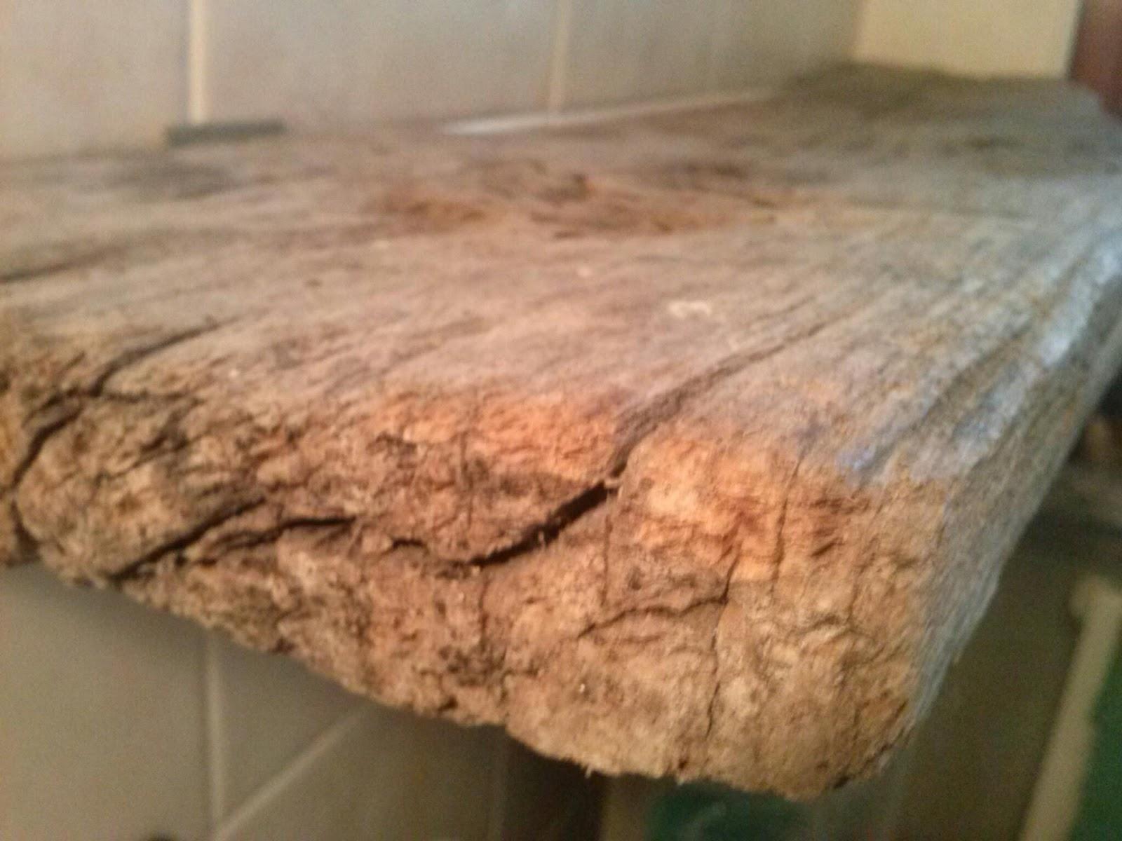 Top Mamma in cucina.gemma: Mensola con legno grezzo GS21