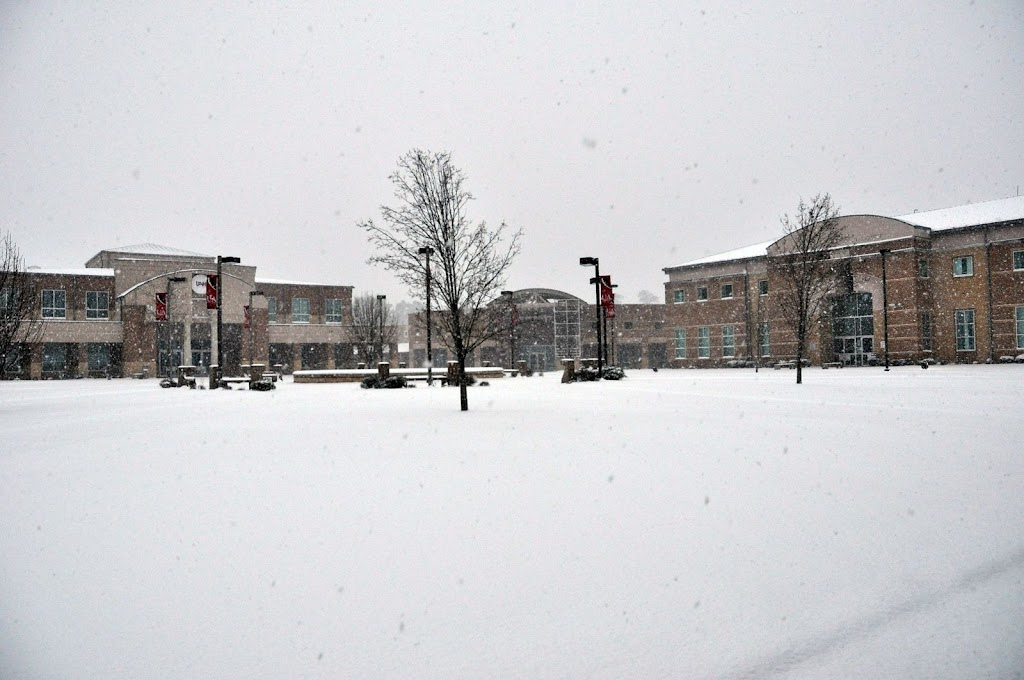 UACCH Snow Day 2011 - DSC_0014.JPG