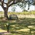 Parque del Prado Pet Cemetery: Un cementerio de mascotas para honrar la vida de esos incondicionales amigos