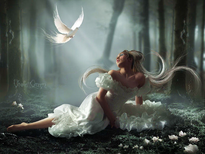 Beauty And White Flowers, Magic Beauties 2