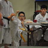 2012 - Yellow Belt Test