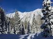 Snowshoeing White Pine - 3