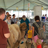 Fort Bend County Fair 2015 - 100_0157.JPG