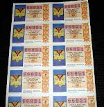 Loteria Nacional-poncho plumas