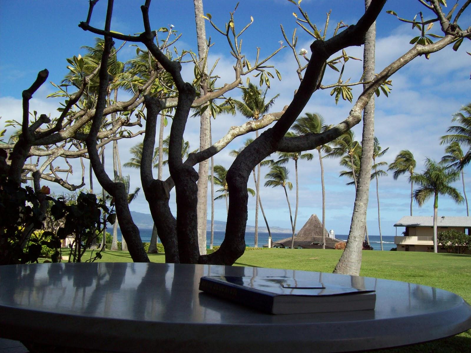 Hawaii Day 6 - 100_7645.JPG
