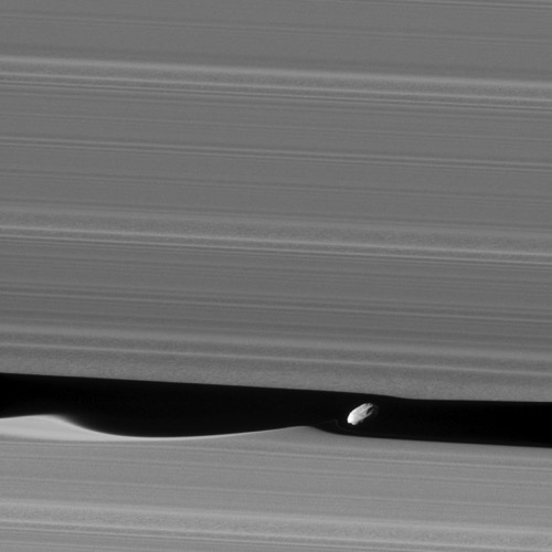 Cassini daphnis jan2017 590 jpg CROP original original
