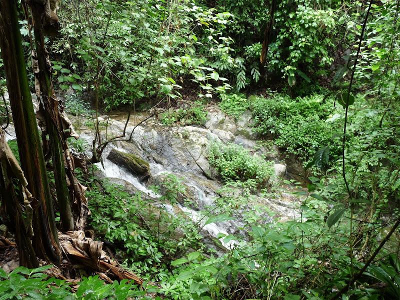 Chine .Yunnan,Menglian ,Tenchong, He shun, Chongning B - Picture%2B877.jpg