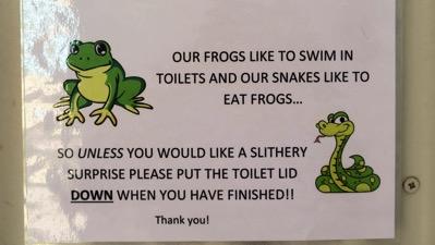 Frog Notice