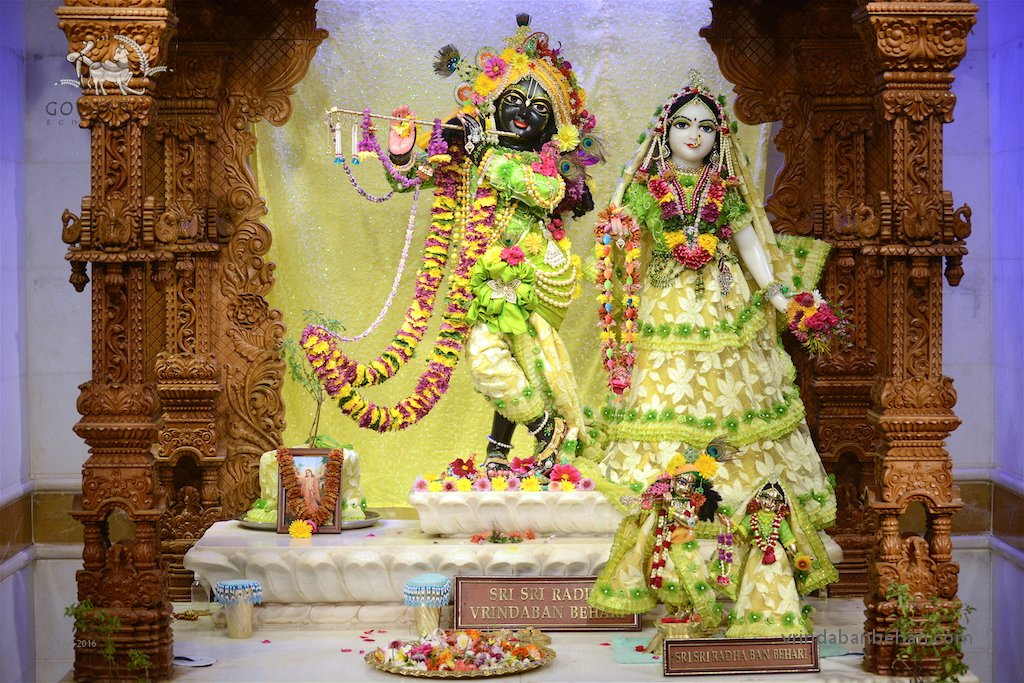 ISKCON GEV (Wada) Deity Darshan 31 Jan 2016 (2)