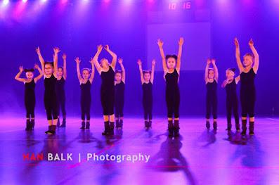 Han Balk Voorster Dansdag 2016-3344-2.jpg