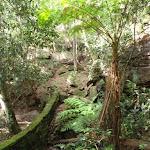 Mossy Creek diversion (119887)