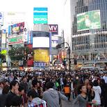 downtown shibuya in Shibuya, Tokyo, Japan