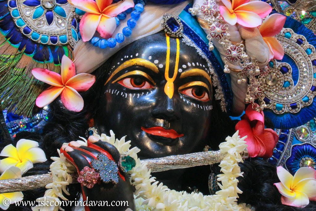 ISKCON Vrindavan Deity Darshan 20 Sep 2016 (3)