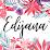 Edi Obiakpani-Guest's profile photo
