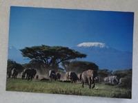 280 11-carte postale