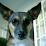 Jason Simons's profile photo