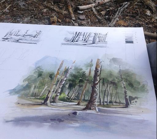 stage aquarelle en foret de Fontainebleau_ Jeanne PAPA - 02.jpg